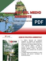 POLÍTICAS DEL MEDIO AMBIENTE