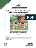 Prog. Modular Multigrado Comunicacion