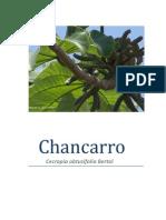 Chancarro