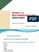 Gena Park2