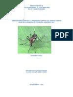 Plan Dengue 2013 (1)