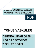 Peran Endotel Dalam Homeostasis Sirkulasi