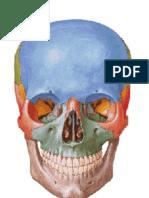 Trabalhos Estética facial