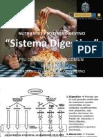 Sistema Digestivo 9 - 2012