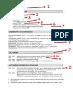 Curriculum Vitae - Intermediair 2013.02.22
