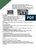 Unidad X Protesis Inmediataimrpime Prosto