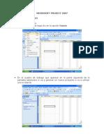 Manual Project 2007 - Copia