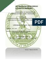 informe de practicas preprofesionales cañasbanba.docx