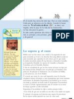 Fichas-Lectura