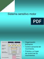 Sistema Sensitivo Motor