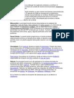 Biologia (Jose Maria Morelos y Pavon)