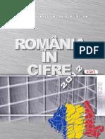 INS Romania in Cifre 2012