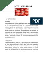 Tomato Paste Plant