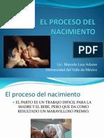 El Proceso Del Nacimiento