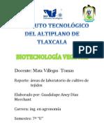 Biotecnologia Vegetal Reporte de Practica