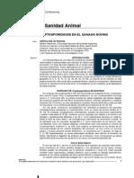Criptosporidiosis en El Ganado Bovino