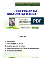 Diagnose Foliar Mangueira