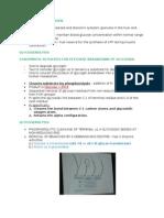 Functions of Glycogen