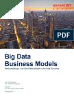 Experton Big Data Business Models 2013 Teaser