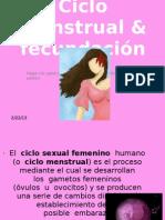 1.- Ciclo Menstrual&Fecundacion
