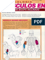 Ejercicios De Fortalecimiento (Musculación) Tomados De Muscle & Fitness - 102 Pags En Pdf
