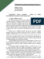 Tema 7 Elemente de Comunicare Interculturale