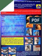 119027932-Exoticos-Aves-Fractura-Pico.pdf