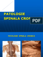 Patologie Spinala Cronica