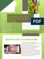 Presentacion proyecto capacitación imple. feria chocolate.pptx