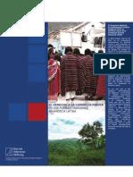 La consulta previa en el Estado boliviano