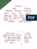 PP Feokrositoma Baru1
