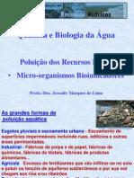 Aula Zoraidy _ Quimica e Biologia da Água 10 maio 2012