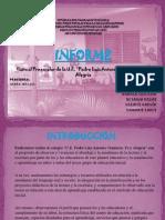 informe.pptx