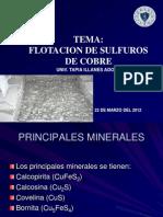 88953837 Flotacion de Sulfuros de Cobre