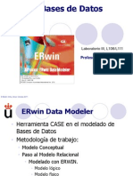 ERwin.pdf