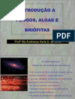 Introdução_Algas_,_Fungos_e_Briófitas
