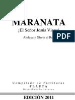 Coletânea de Partituras - Flauta.pdf