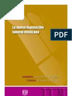 SÁNCHEZ-CASTAÑEDA. Alfredo, REYNOSO CASTILLO. Carlos,  LA NUEVA LEGISLACIÓN MEXICANA. 1a. ed. UNAM, 2013