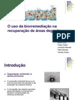 METAIS PESADO BIORREMEDIAÇAO.pdf