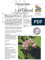 Balm of Gilead-Insect Repellent