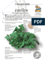 Feverfew Insect Repellant