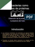 obtenciodelaproteina.06