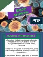 tema9inflamacion-120924214005-phpapp02 (1)