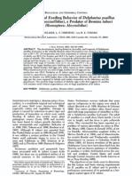 Reproduction and Feeding Behavior of Delphastus Pusillus