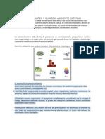 LOS ADMINISTRADORES Y SU MEDIO AMBIENTE EXTERNO_V1.docx