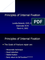 03-06 Internal Fixation