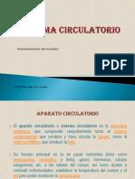 sistemacirculatorio-diapositivai-110824194933-phpapp02