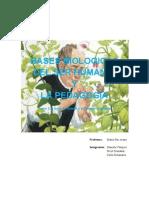 trabajo biologia mendel listo (2).doc