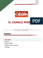 Cesvin Mobile