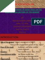 A Presentation On NEDFi haat